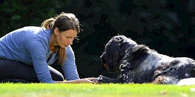 Eine Dozentin demonstriert die Behandlung des Hundes