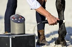 Als Rehabilitationsmaßnahme wird am Pferd die physikalische Therapie angewandt