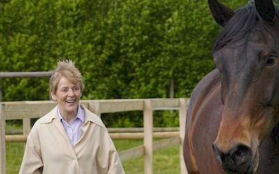 Pferdeosteotherapeutin Beatrix Schulte Wien