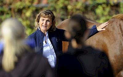 Teilnehmerinnen schauen der Dozentin zu, die etwas am Pferd zeigt