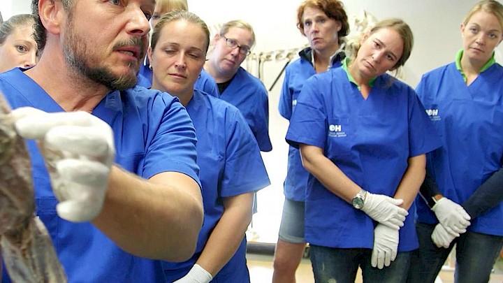 Dozent Dr. Polster zeigt etwas am medizinischen Präparat