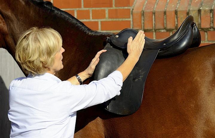 Die Dozentin erläutert am Pferd den richtigen Sitz des Sattels