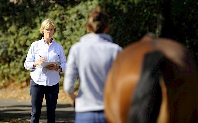 Die Therapeutin führt am Pferde eine Ganganalyse durch