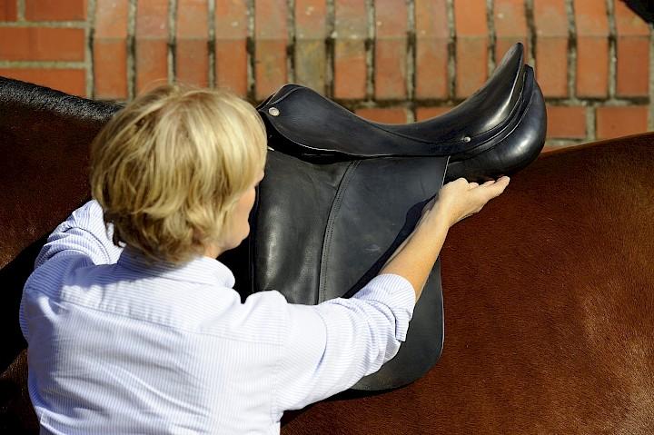 Die Dozentin passt den Sattel auf dem Rücken des Pferdes an