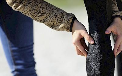 Eine Teilnehmerin ertastet eine zu behandelnde Stelle am Pferdebein