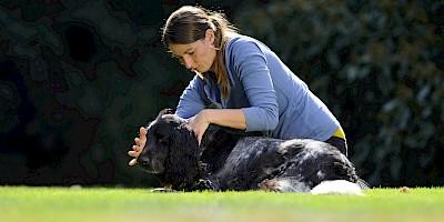 Ein Hund wird von einer Therapeutin an der Halswirbelsäule behandelt