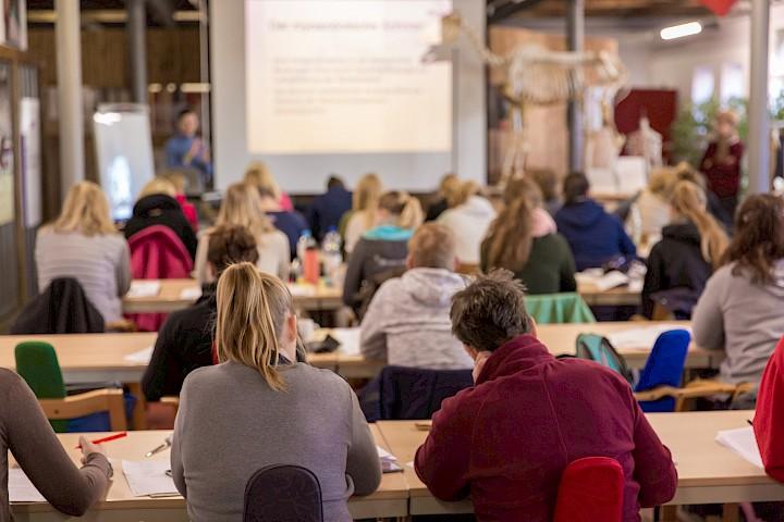 TeilnehmerInnen sitzen im Klassenraum und hören der Dozentin zu